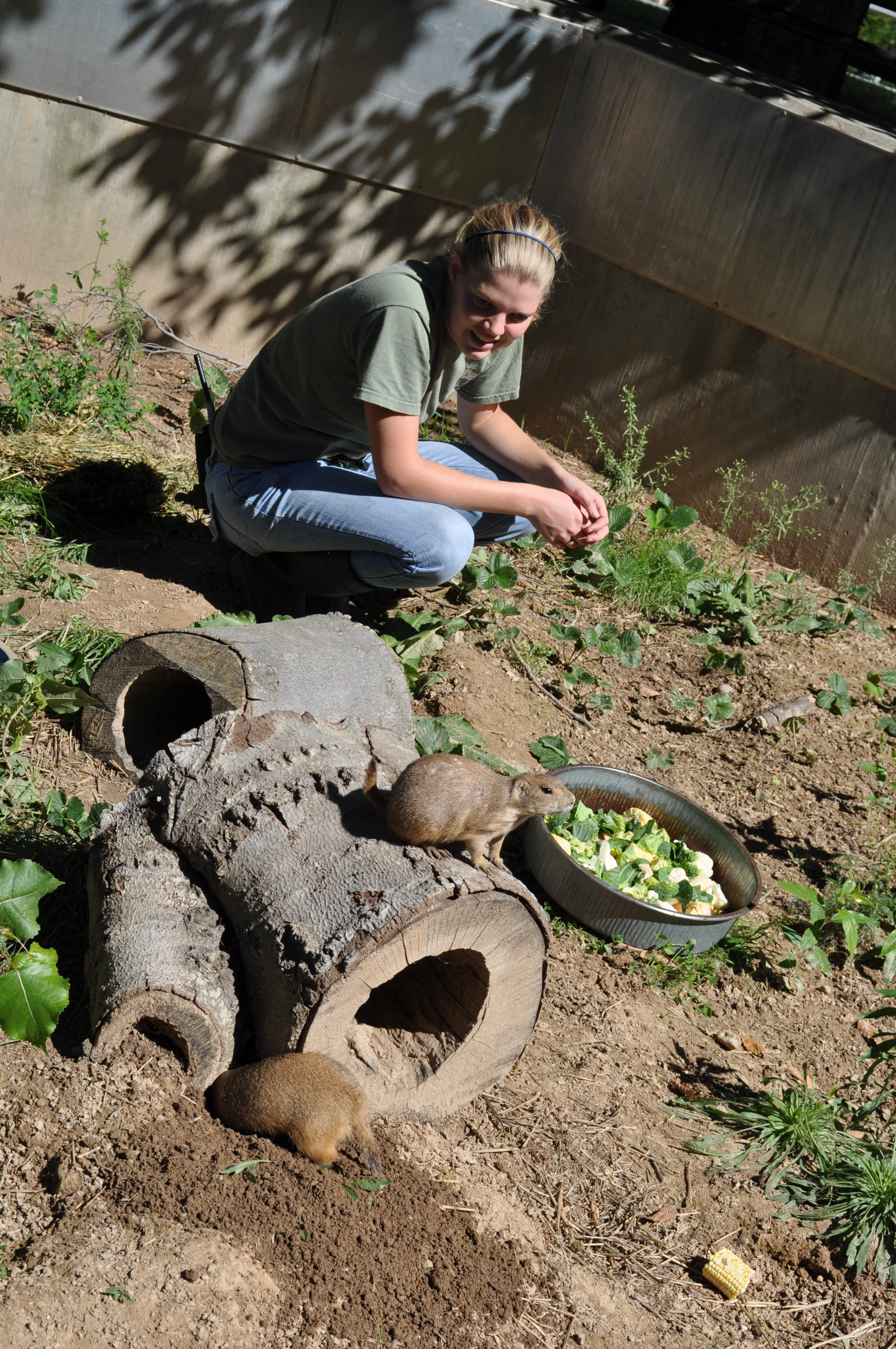 Tracy Moore with Black Tailed Prairie Dogs